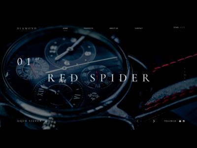Web Shop German Watches