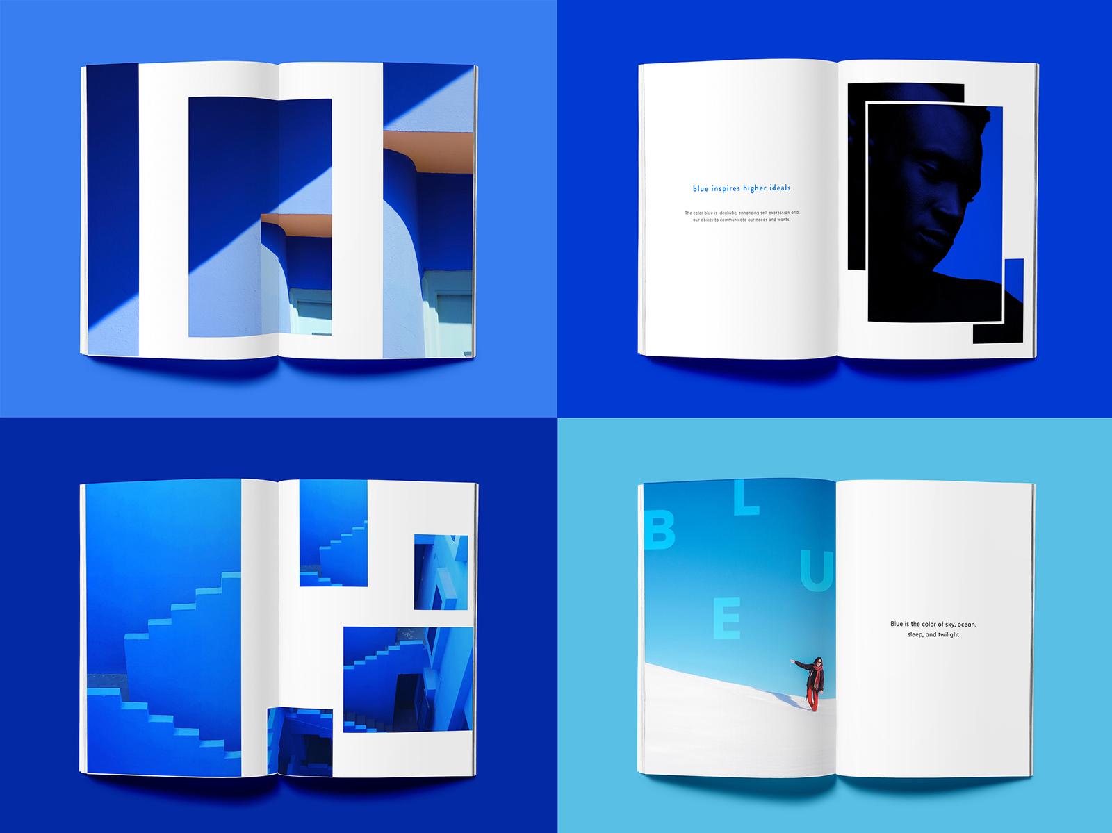 blue book by blue pretzel dribbble