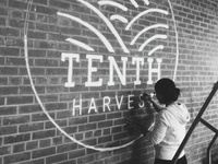 Tenth Harvest Logo Application