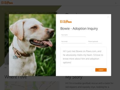 Paws Animal Shelter Web Design