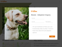 Paws Animal Shelter Web Design