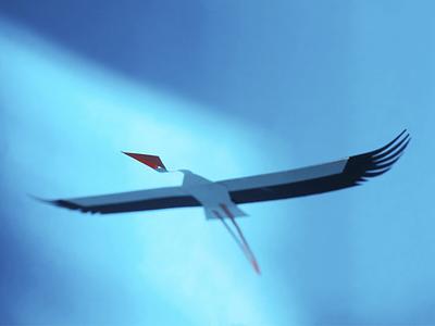 Stork photo papercut maurice van der bij