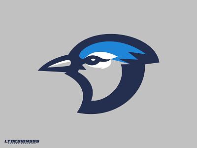 Blue Jay ( 1 ) jays logo blue jay logo jays birds bluejays sports design.bluejay sports identity sports branding sports logo