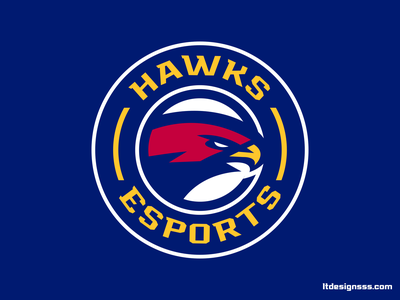 Hawks (2) mascot logotype birds flat design illustration sports logo badge eagles hawks identity design sports identity sports design sports branding brading logo sports
