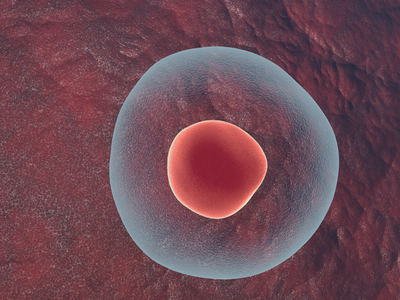 Microscopic view of cells graphic cells body realistic. life shading micro life art 3d cinema4d science cell