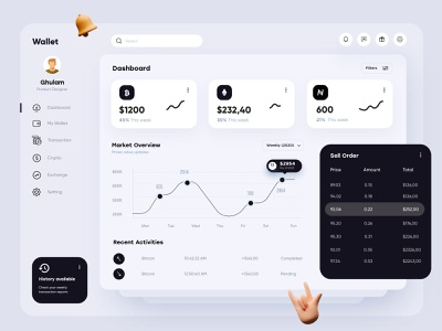 Wallet Dashboard Design ux uiux interface financial finance app dashboad admin design