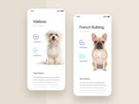 Dogz Application