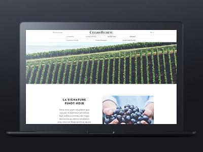 Canard-Duchêne - The house page champagne desktop ui