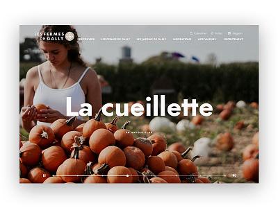 Ferme de Gally homepage website brand ux ui