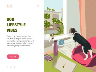 Lifestyle Blog Concept