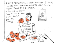 #mylifeillustrations: Persimmons