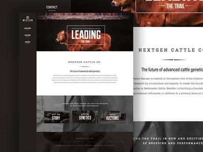 Nextgen's Cattle Co. Website bold vertical navigation ux ui video rustic website