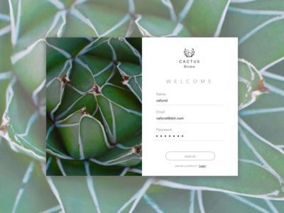 Daily UI #001 | Sign Up