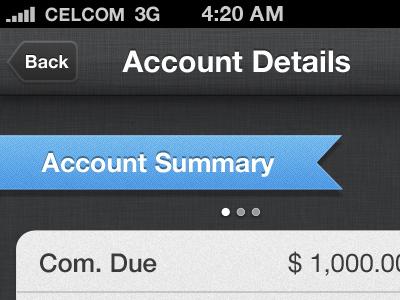 Account Details iphone ui app app design