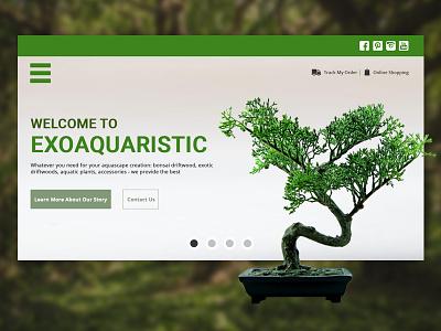 Exoaquaristic Mockup webmockup mockup ecommerce showcase hero banner plant bonzai product webdevelopment webdesigner webdesign web illustration branding ux ui design