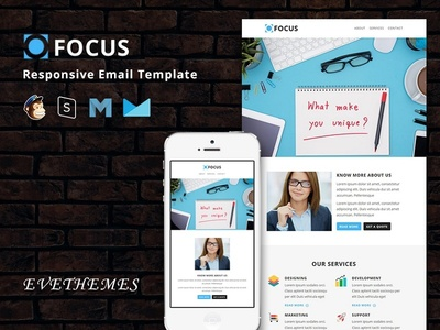 Focus  - Responsive Email Template freelance training events camp photography mailchimp campaign responsive newsletter email template