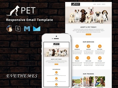Pet - Responsive Email Template