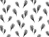 Wispy Pine