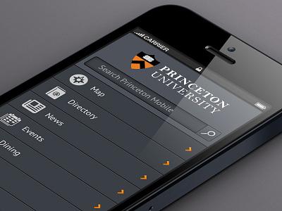 Princeton Mobile mobile app ui icons