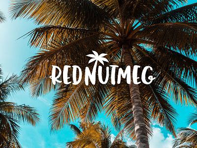 RedNutmeg Logo Design west indies sunny day sunny sun logo sea palm trees palm tree nutmeg logotype logo designer logo design happy food logo caribbean logo beach logo barbados caribbean bahamas