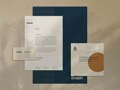 Firmus finance identity design graphic design branding