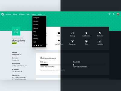WHMCS Light & Dark Theme (RabbitNode Web Hosting Dashboard) ux typography ui dark app branding design website clean sleek modern compact night light dark dashboard webhosting hosting web