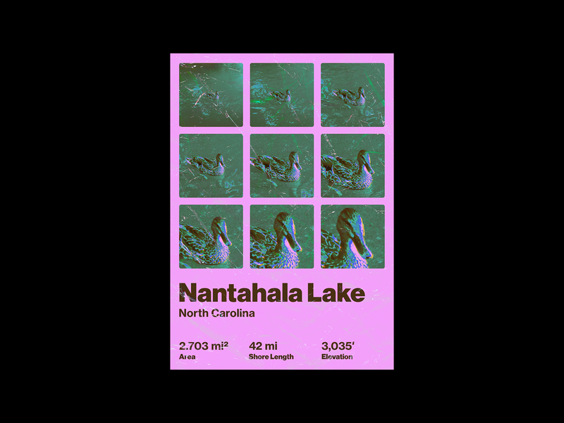 Nantahala Lake, NC Poster north carolina nantahala lake duck design poster design poster