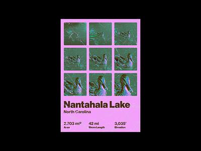 Nantahala Lake, NC Poster north carolina nantahala lake duck design poster design poster