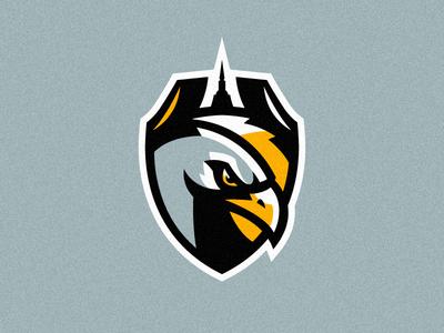 "logo for the hockey club ""Hawks"" St. Petersburg"