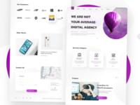 concept for edora media website