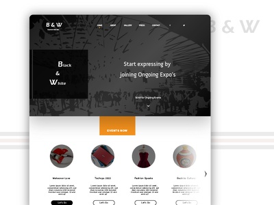 Black & White - Platform to present yourself landing page color theory user experience software design website color ui ux