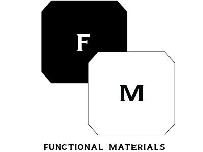 Fm logo final