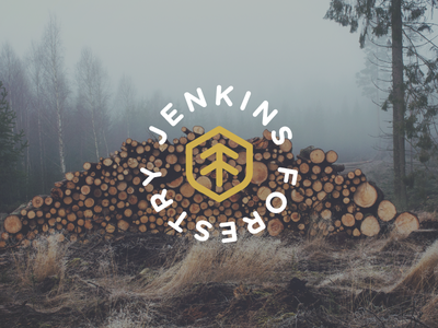 Jenkins Forestry branding logo mark forestry trees