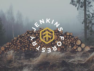 Jenkins Forestry