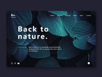 Back to Nature - estudo