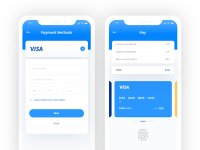 Payment card app credit card payment method payment concept payment app finance concept finance app