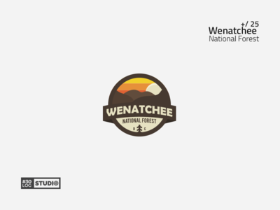 Wenatchee | ThirtyLogos#25