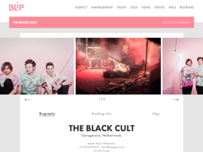 BLiP Agency - The black cult music agency booking artist profile web development design