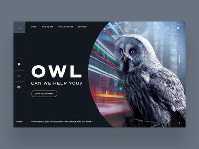 Owl CN We Help You Ui Design Concept logo designer logo design daily design design inspiration web developer web designer photography graphic design web design
