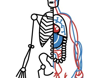 Human Body Examination
