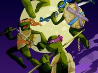 Teenage Mutant Ninja Turtles fan art