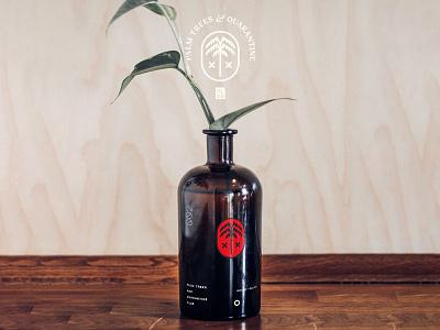 Vase Bottle Mockup bottle vase branding identity mockup design mockups font logo typography psd download