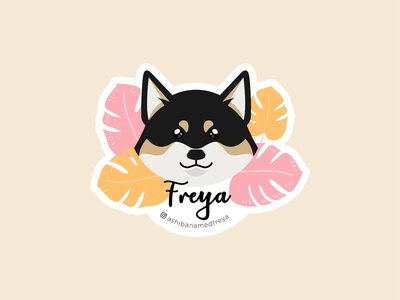 A Shiba Named Freya