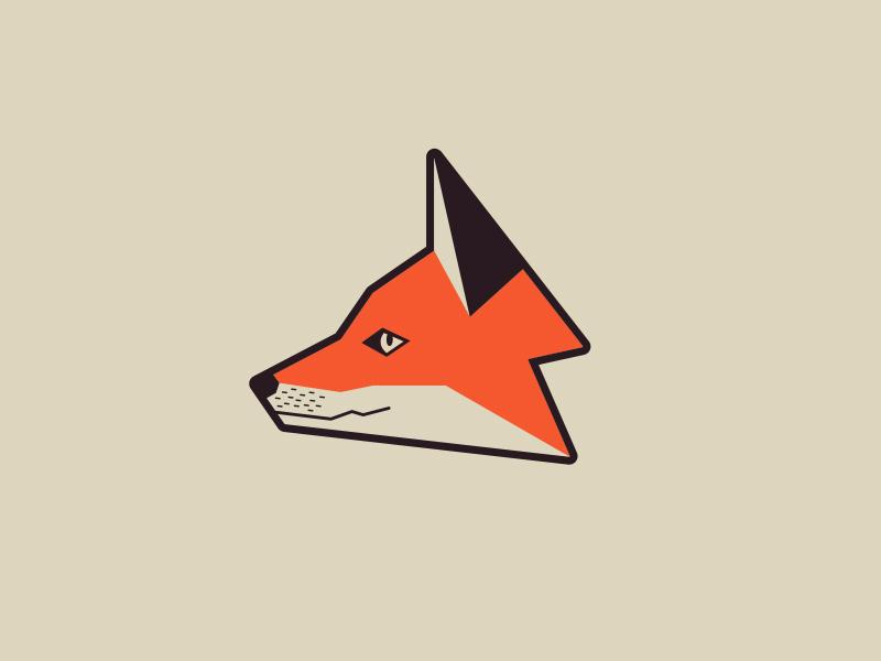 Fox Head illustration mammal nature animal fox