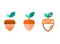 One Acorn, Three Ways — Illustrated Icons