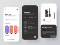 Application Conceptual Design 03