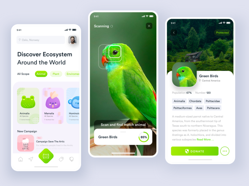 Animal Conservation App with Augmented Reality noansa details match scanning mamalia enviroment ecosystem green bird charity donate clean ux ui app conservation animal ar ai augmented reality
