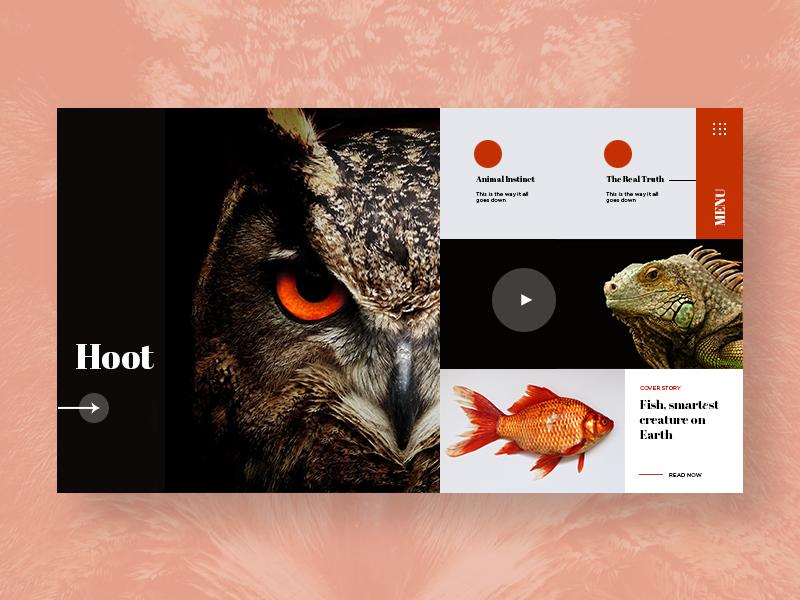 Animal Blog Layout dwayneadams bladesettler blog website animal blog inspired layout