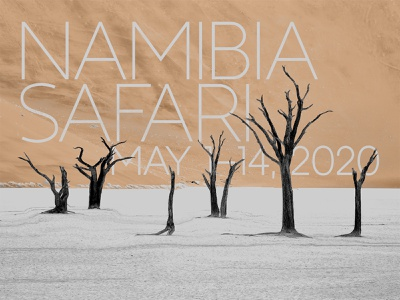 NAMIBIA SAFARI typography typeface typedesign type trend sans-serif serif sans print motiondesign logo lettering graphicdesign geometric fontdesign font design aesthetic