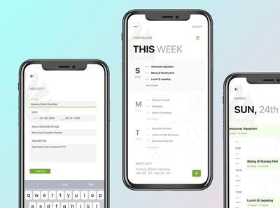 Multi City Trip Planner ui app design ux